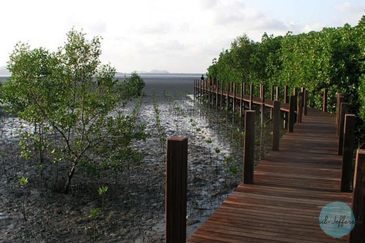 Kung Kraben Bay2