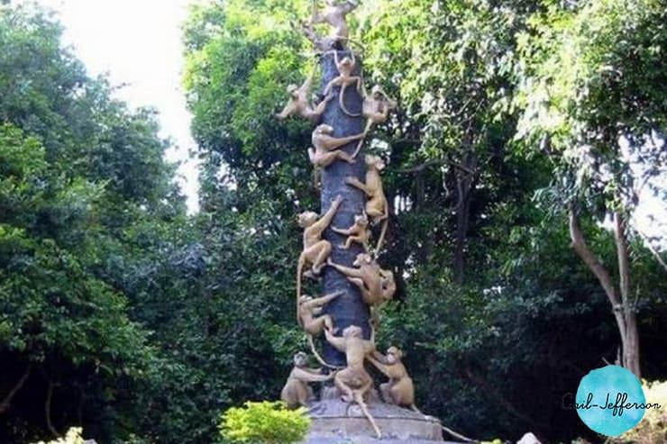 科桑皮森林公园