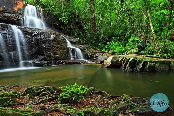 Pang Sida国家公园2