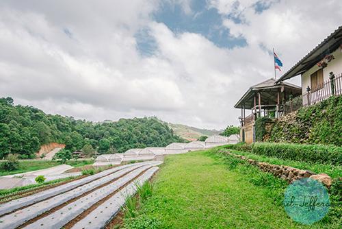 Nong Hoi Royal Project