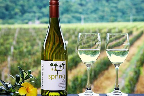 Granmonte Vineyard and Winery1